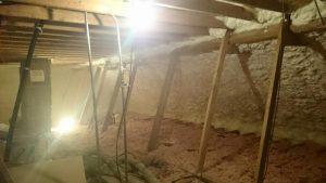 attic spray